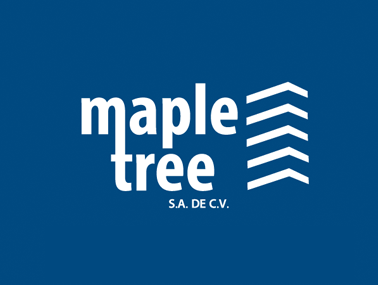 Maple Tree Constructores